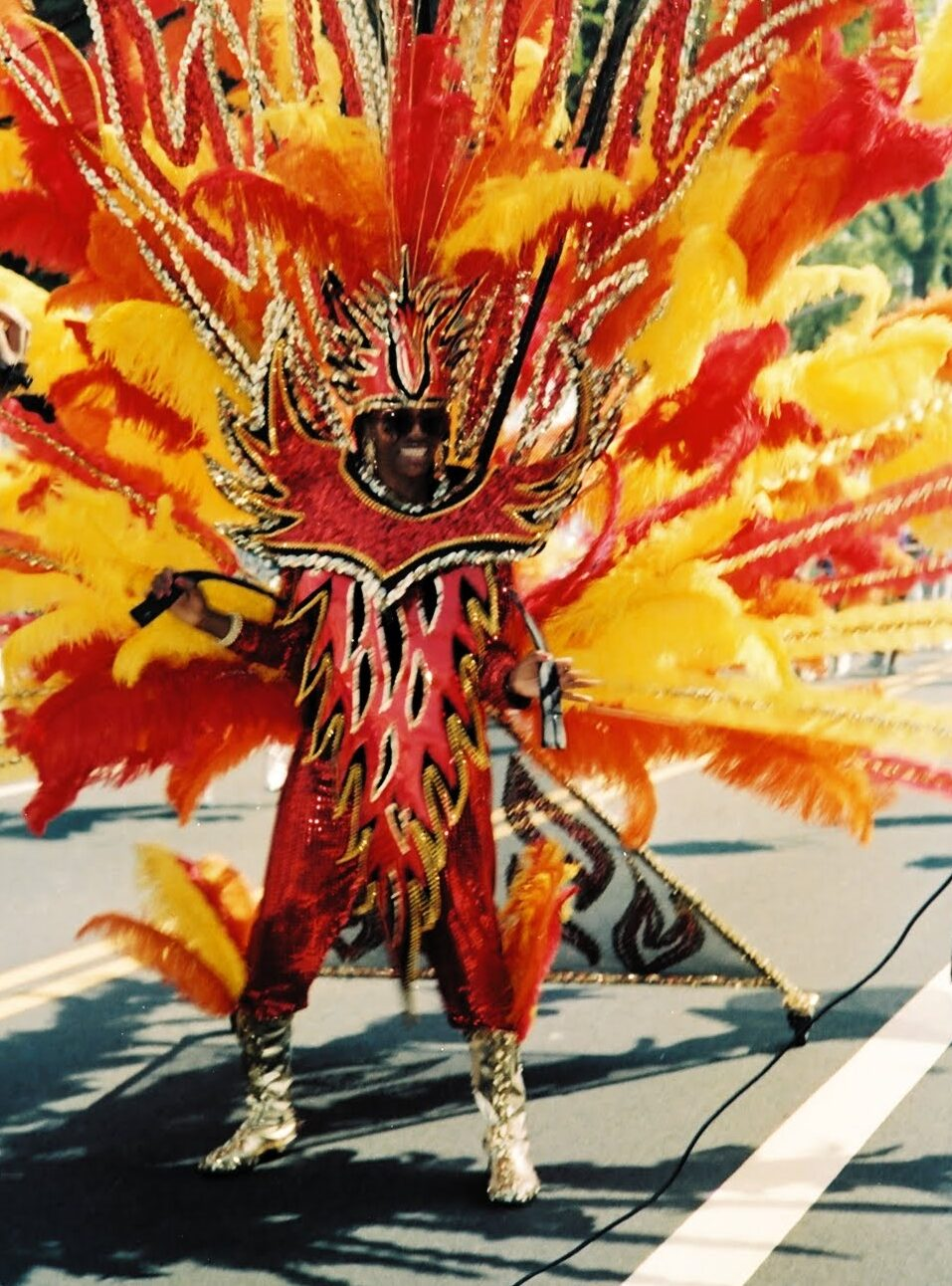 West Indian Day Parade – 35 Years of History