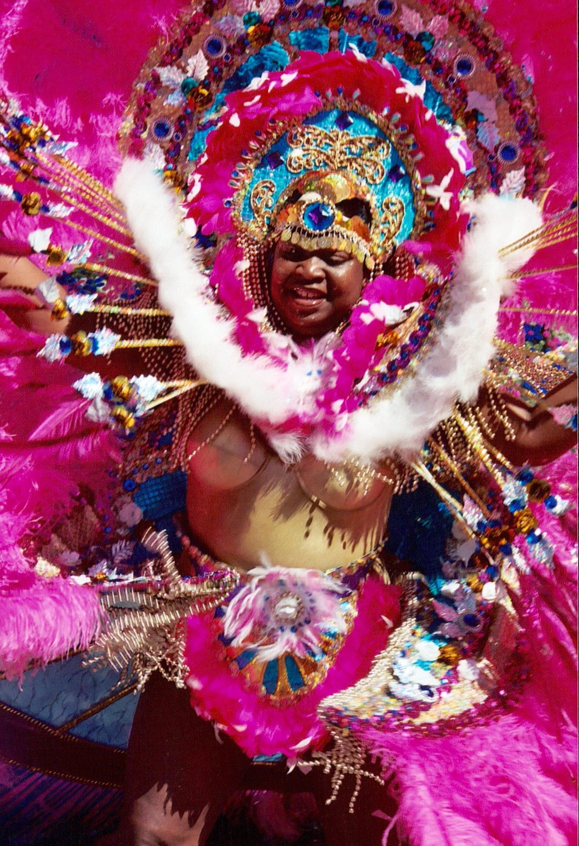 West Indian Day Parade – 30 Years of History